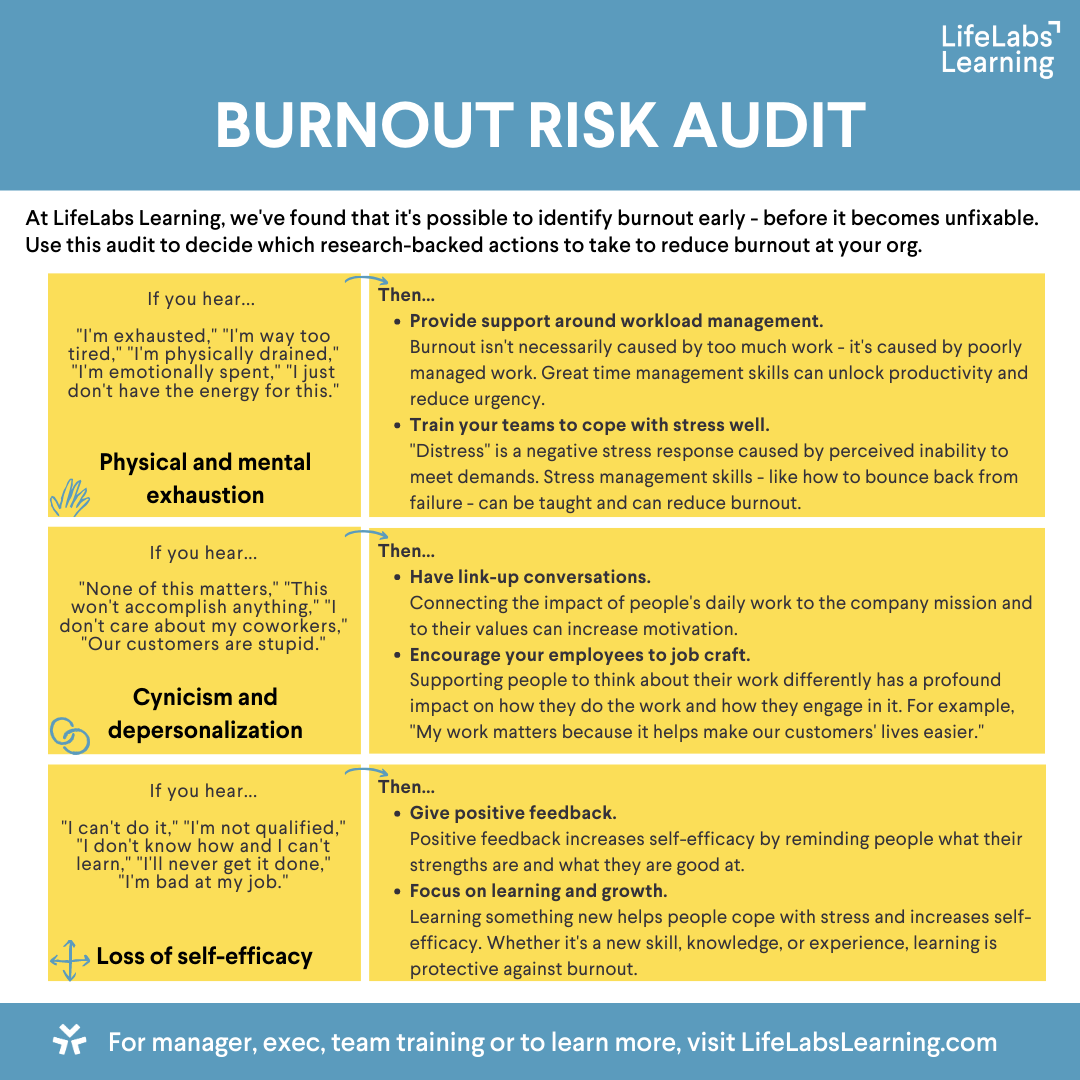 Burnout Risk Audit v3